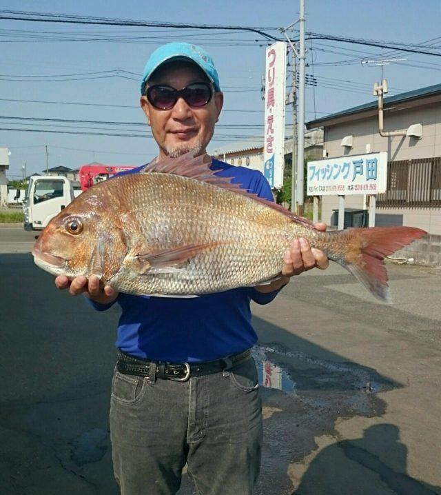 美女真鯛75.5cm  釣果045