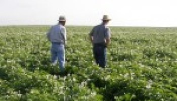 Agriculture workshop for military slated Feb. 15 in Dallas