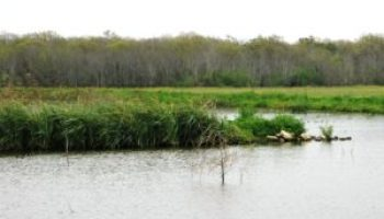 May marked by Plum Creek Watershed activities