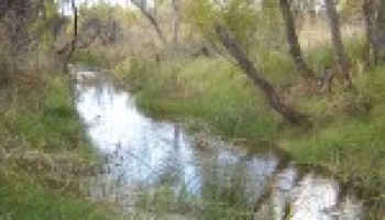 Riparian and stream education program slated for April 27 in Jefferson