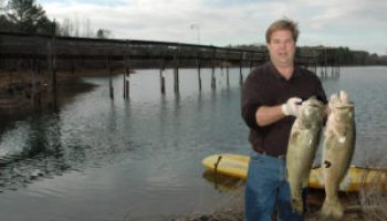 Online program to help coastal tourism businesses 'fish' for customers