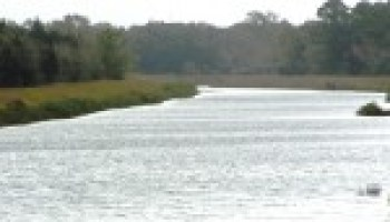 February 22 water quality training focused on Highland Bayou, surrounding Galveston County watersheds