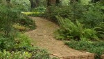 Dallas AgriLife center to present 'Be Your Own Landscape Designer' program in June