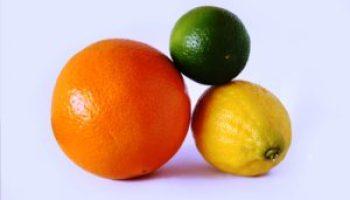 Fruit tree seminars slated for January in San Antonio