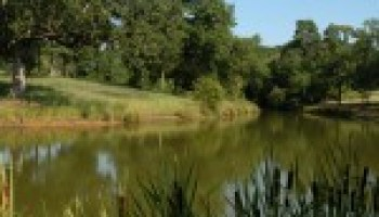 Pond management program set for Oct. 2 in Austin