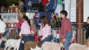 Educational offerings enhance San Antonio International Farm and Ranch Show