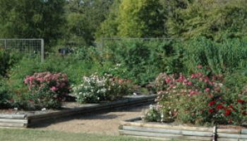 Earth-Kind landscape school will be April 10-12 in Dallas