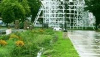 Bioretention 'rain garden' program to be held Jan. 14 in Dallas