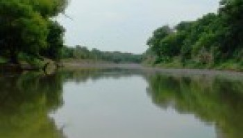 Riparian and stream ecosystem program workshop set for Sept. 17 in Seguin