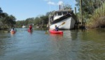 Water quality training June 25 will focus on Double Bayou watershed