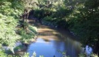 Riparian, stream ecosystem workshop for Leon River watershed set for Sept. 12