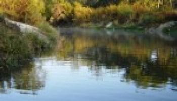 Urban riparian, stream restoration workshop set Aug. 16 in The Woodlands