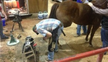Texas A&M Farrier Conference offers tips on proper foot care, shoeing techniques