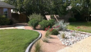 AgriLife Extension to present native plant landscaping program March 12 in Austin
