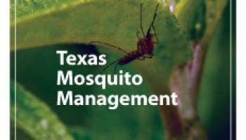 First 'Texas Mosquito Management' manual readies municipalities for spring mosquito onslaught