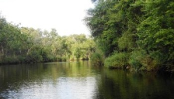 Riparian and stream ecosystem workshop set for Feb. 27 in La Marque