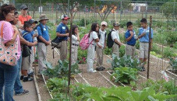 Children's Vegetable Garden Program accepting applications for spring 2015