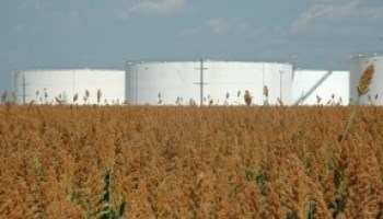 Capital Crop Conference slated for Oct. 29 in Manor
