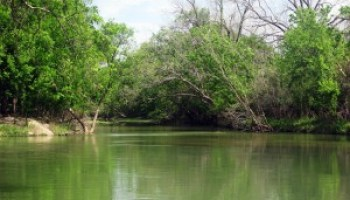 Water quality training April 21 in Palacios will focus on Tres Palacios River and Bay