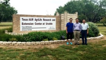 Chinese researchers visiting Uvalde center contributing to Texas cotton improvement
