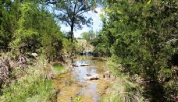 Riparian and stream ecosystem workshop set for March 3 in Lampasas