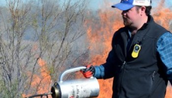 Rekindled interest in prescribed fire sparks AgriLife Extension agent training