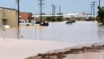 AgriLife Extension provides information on flood recovery