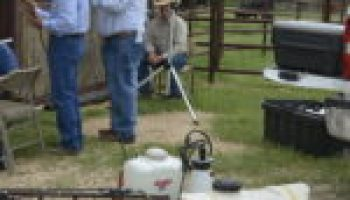 Multi-county field day emphasizes good land, animal stewardship
