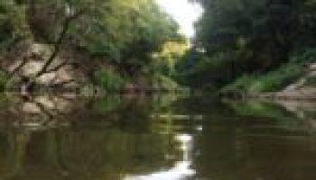 Meetings July 14 will focus on Navasota River watershed planning effort