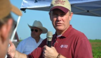 Thomasson named Engineer of the Year by Texas association
