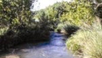 Riparian, stream ecosystem workshop set for May 16 in Fredericksburg
