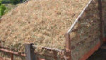 Bermuda grass program slated for June 27 in Floresville