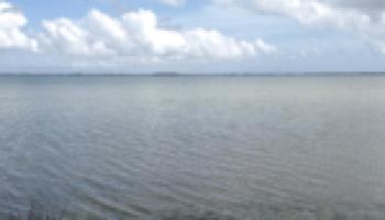 Stakeholder meeting for Mission, Aransas rivers set for Aug. 10 in Refugio