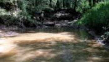 Water quality training Nov. 7 in Nacogdoches to focus on Attoyac Bayou watershed