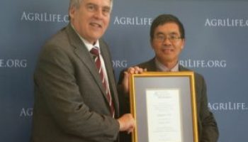 Xue honored with AgriLife Research Faculty Fellow award