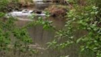 Lone Star Healthy Streams program set for May 24 in Seguin
