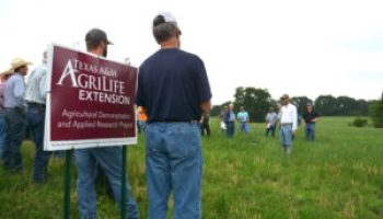 Dr. O.D. Butler Forage Field Day to highlight leases, yaupon control