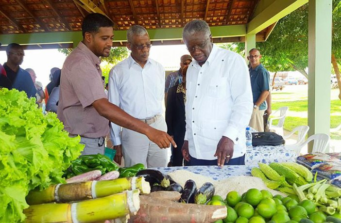 AGRICULTURE TALKS: Guyana's President David Granger and Prime Minister of Barbados, the Hon. Freundel Stuart