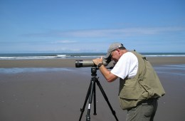 Jay Bogiatto watches birds through a scope on a beach in Panama.