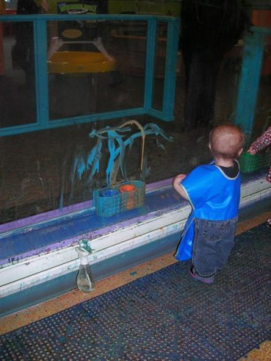 Children's Museum in Oak Lawn - water table - Toddling Around Chicagoland