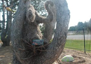 Bookworm Garden #Sheboygan - Horton Hatches the Egg