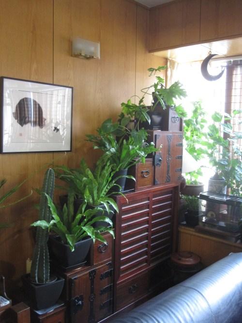 where do you tansu part ii. Black Bedroom Furniture Sets. Home Design Ideas