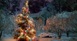 christmas_at_night-wallpaper-1440x900