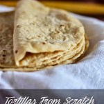 Whole Wheat Tortilla Recipe| Flatbread Recipes
