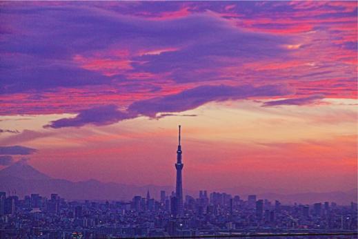 縮小Tokyo sky Treea