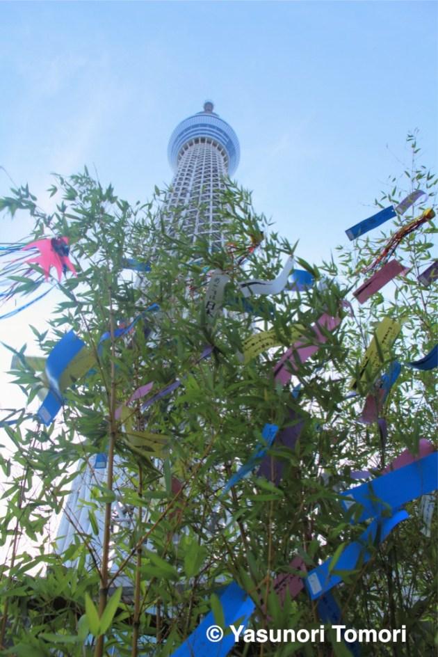 短冊にしたためた想いが風にそよぐ=東京スカイツリーにて