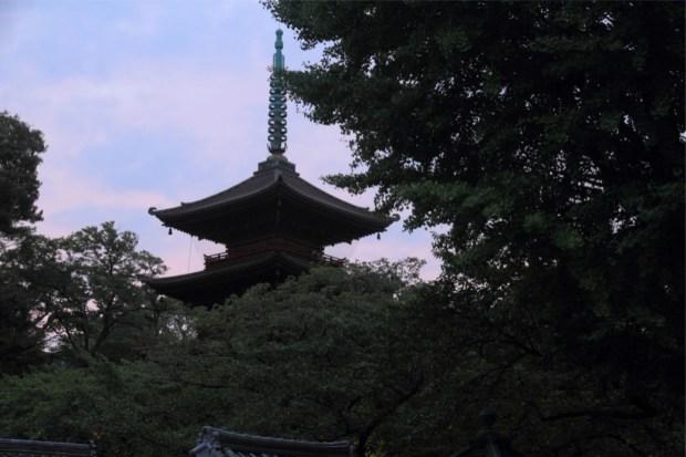夜明けの五重塔