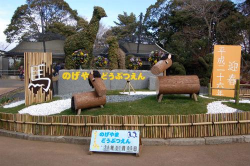野毛山動物園 撮影スポット