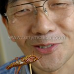 eating-a-locust
