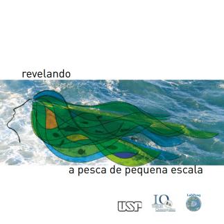 Report by Gasalla and Ykuta, 2015